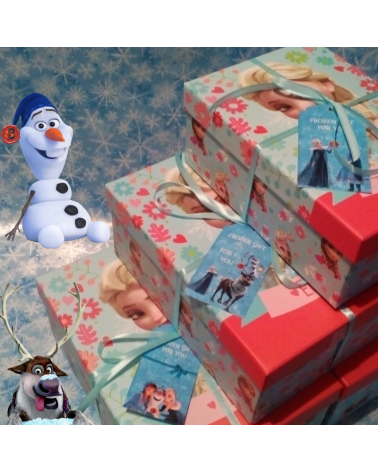 Gift Set Big Box Frozen Disney