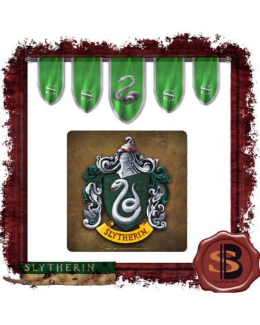 Cup pad Slytherin, Harry Potter