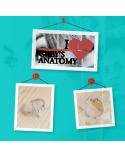 Ключодържател You are my person, Анатомията на Грей