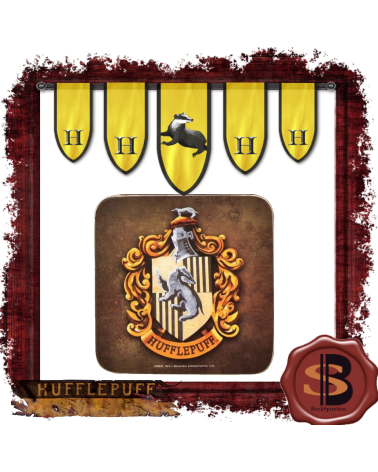 Coaster Hufflepuff, Harry Potter