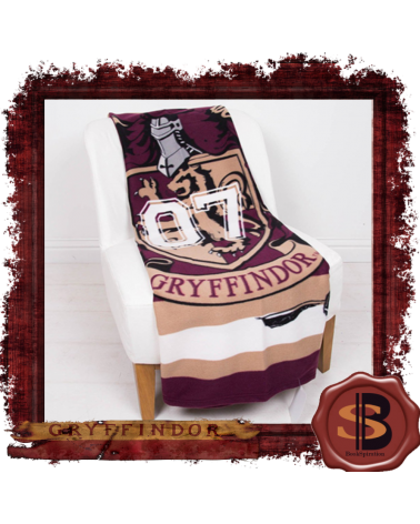 Harry Potter Muggles Sqaure Cushion
