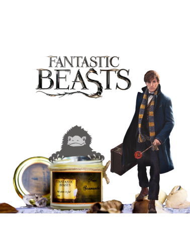 Scented Candle Harry Potter