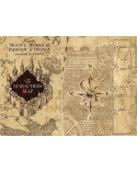 The Marauders Map, Harry Potter