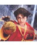 Колие голям Златен снич, Хари Потър