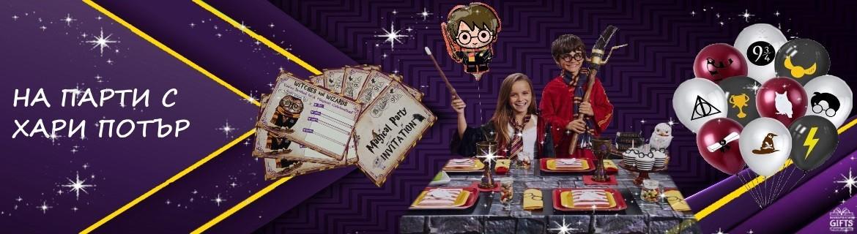 Party Decoration Harry Potter